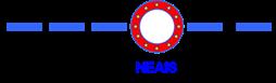 NEAIS