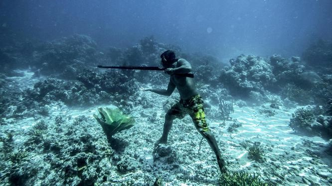 Bajau 'Sea Nomads' the first humans known to have genetic adaption ...